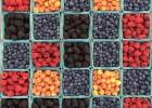 Comment profiter des fruits d'été toute l'année