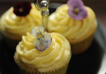 Cupcakes au chocolat blanc