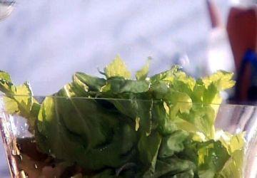 Salade de laitue et d'herbes fraîches