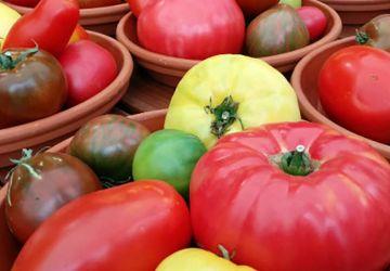 Sauce tomate à l'ail confit