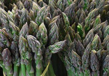 Salade d'épeautre et asperges grillées, vinaigrette aux herbes fraîches
