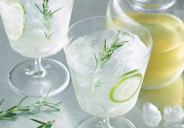 Genièvre-fizz (faux gin-fizz)