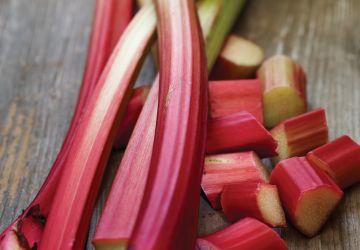 Compote fraise-rhubarbe du Café