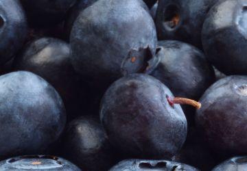 Rochers aux bleuets et au quinoa soufflé