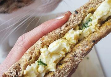 Sandwich aux oeufs léger
