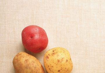 Purée de pommes de terre, pommes et cheddar