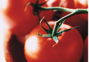 Vinaigrette aux tomates fraîches