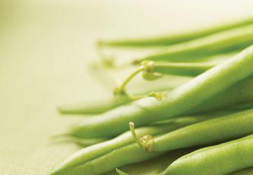 Petite salade de haricots verts