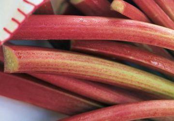 Croustillant à la rhubarbe