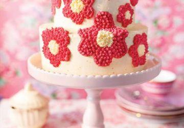 Gâteau au litchi et à la framboise