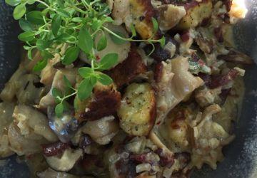 Gnocchi aux herbes salines à la sauce champignons et au jerk de canard