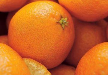 Gelée de jus de fruits