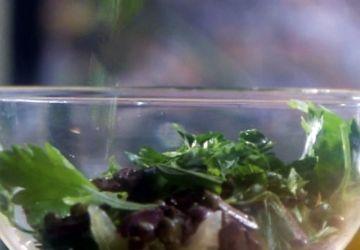Salade de persil plat