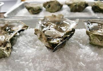 Mignonnettes pour les huîtres